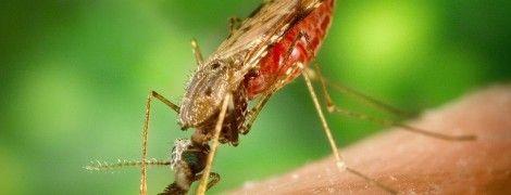 МИД советует украинцам воздержаться от поездок в Анголу из-за вспышки холеры и малярии