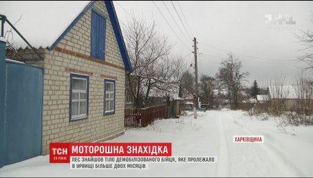 На Харківщині пес знайшов тіло демобілізованого бійця