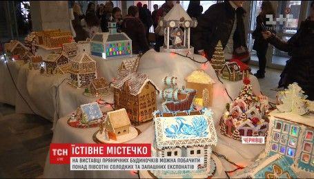 В Черновцах открылась выставка пряничных домиков