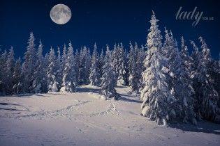 Принимаемся за работу: лунный календарь на январь 2017 года