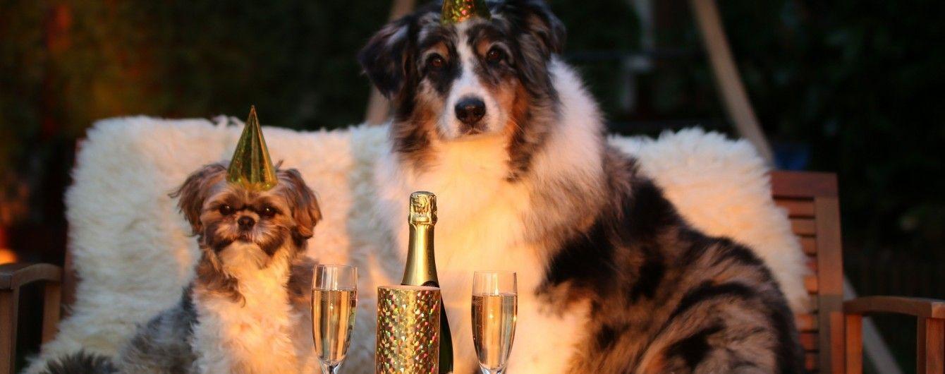 Стало известно, сколько украинцы будут отдыхать на Новый год и Рождество