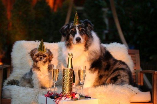 Стало відомо, скільки українці відпочиватимуть на Новий рік і Різдво