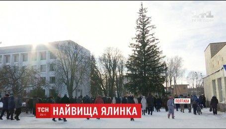 Де найвища ялинка: Національний Реєстр рекордів офіційно зафіксував новий рекорд України