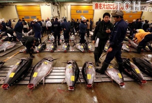 В Японії на всесвітньо відомому ринку Цукідзі продали тунця за $ 630 тис