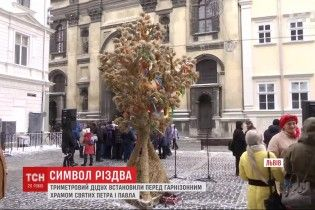 У Львові встановили головний символ Різдва, який зберігся з язичницьких часів