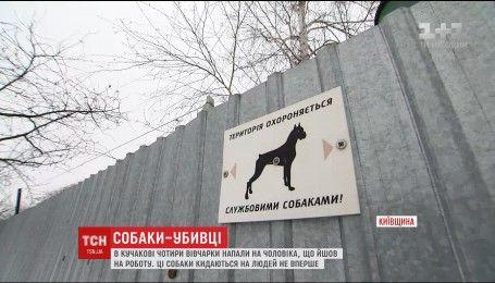 На Киевщине четыре овчарки загрызли до смерти прохожего