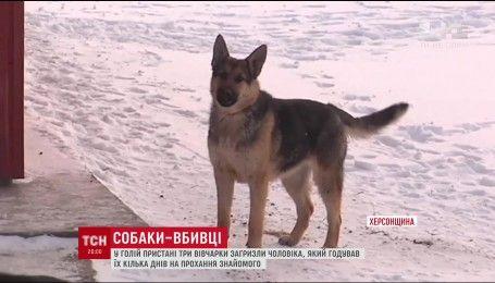 На Херсонщине собаки загрызли мужчину, который кормил их в отсутствие хозяина