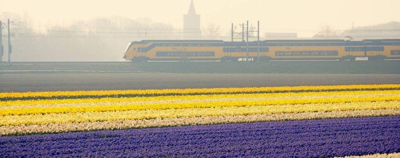 У Голландії віднині всі поїзди працюють на енергії вітру
