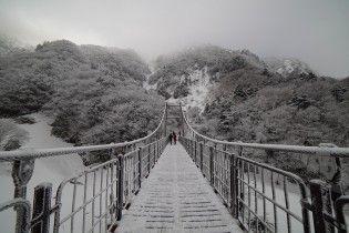 Арктичне повітря принесе похолодання та заморозки в Україну