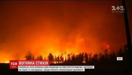 Огненная стихия сжигает чилийские леса