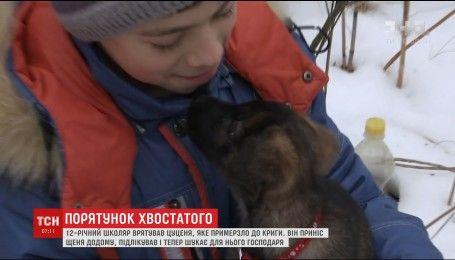 В Херсоне 12-летний школьник спас щенка, который примерзли ко льду