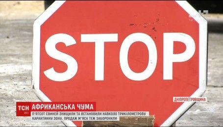 На Дніпропетровщині зафіксували спалах африканської чуми свиней