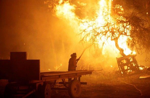 """Найяскравіші фото дня: протест """"ватників"""" у Києві, зимовий ранок у Карпатах"""