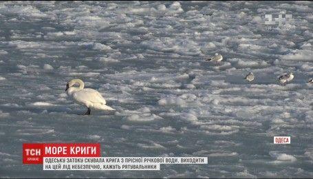 Ледяная сказка по-одесски: залив вновь сковало льдом