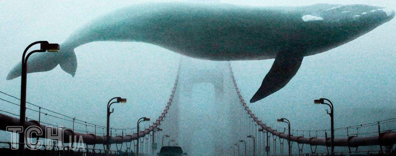 """Дети против """"синих китов"""". На Львовщине школьницы спасли от самоубийства одноклассника"""