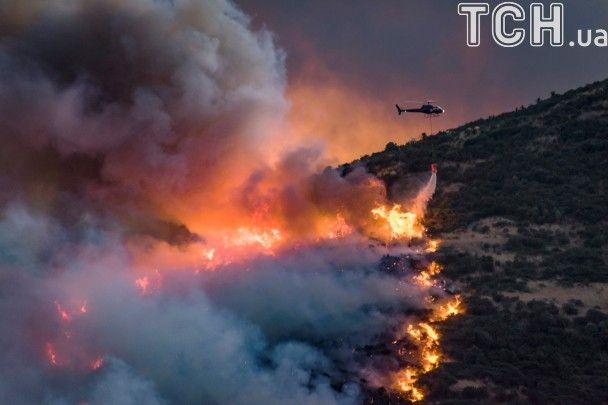 Моторошна видовищність: у Новій Зеландії палають ліси
