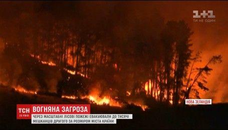 В Новой Зеландии началась массовая эвакуация людей из-за лесных пожаров