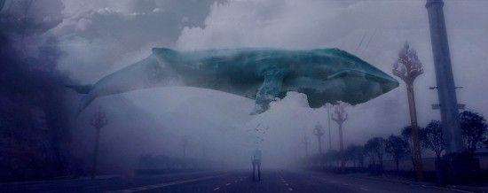 """Верховна Рада ухвалила закон, який дозволить карати організаторів суїцидальної гри """"Синій кит"""""""