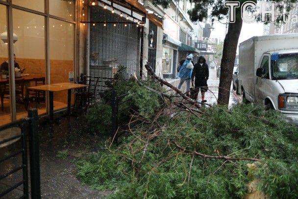 НаСША обвалился  тропический шторм: необошлось без жертв