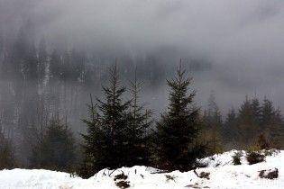 Неділя буде з вранішнім туманом, плюсовою температурою та калюжами. Прогноз на 19 лютого