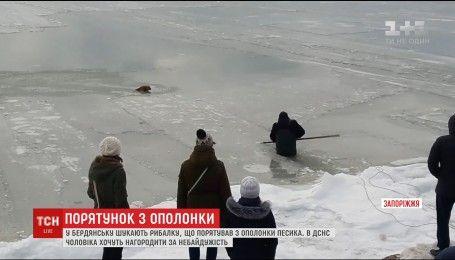 У Бердянську рибалка врятував собаку, який провалився в ополонку