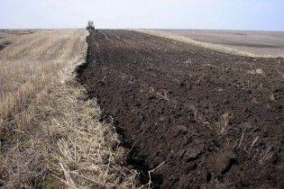 Експерт назвала вартість гектара землі після зняття мораторію на її продаж