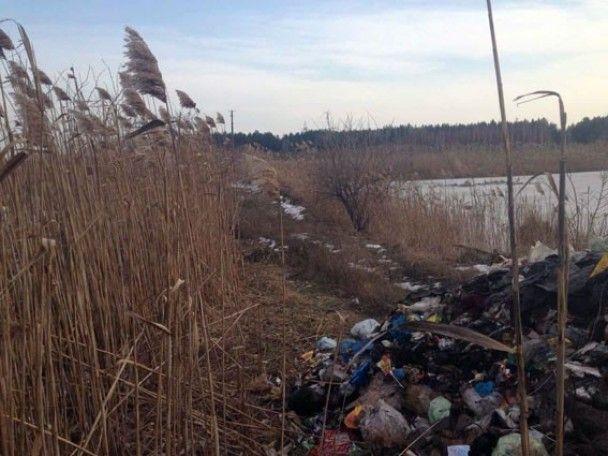 Из-за незаконного разбрасывания по всей Украине львовского мусора открыли 11 уголовных дел