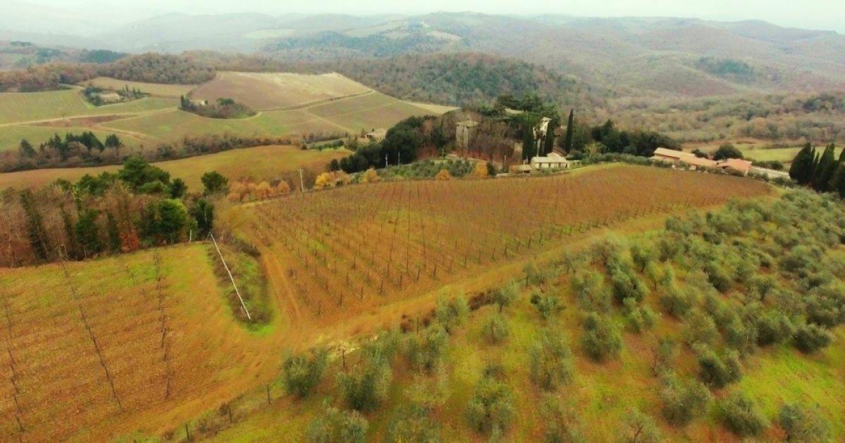 Виноградники в Анапі і Тоскані @ Сайт Олексія Навального
