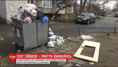 Зимова спадщина: з таненням снігу столичні вулиці перетворились на смітники