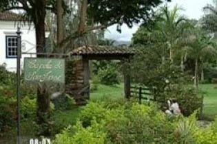 Бразилія скоротить вирубку дерев (відео)