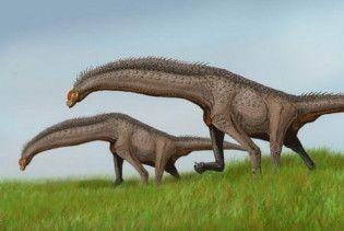У Франції знайшли величезні сліди динозаврів