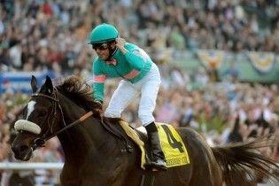 5-річна кобила посіла друге місце у рейтингу найкращих спортсменок
