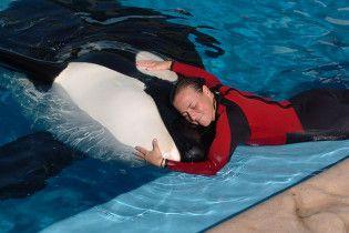 На шоу в дельфінарії у Флориді косатка вбила свою дресирувальницю