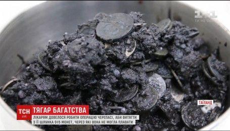 В Таиланде врачи спасли черепаху, которая проглотила 915 монет
