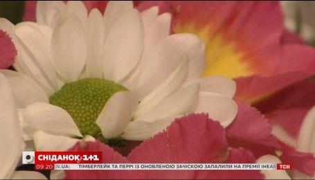 Сколько стоят самые популярные цветы накануне 8 Марта