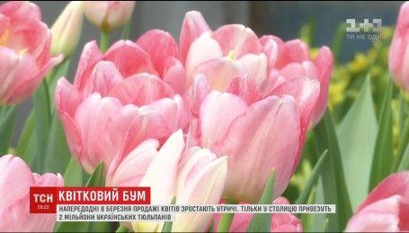 От семени к праздничному поздравлению: в Киеве продолжается цветочный бум