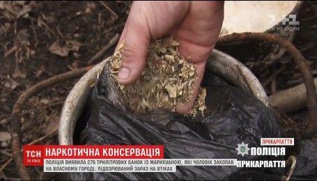 Житель Дубно закрутил марихуану в трехлитровые банки и закопал в землю