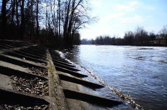 На Закарпатті біля річки знайшли тіло дівчини