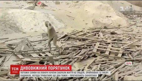 Жінка вистояла проти стихії і врятувала себе з-під кількох тонн багнюки