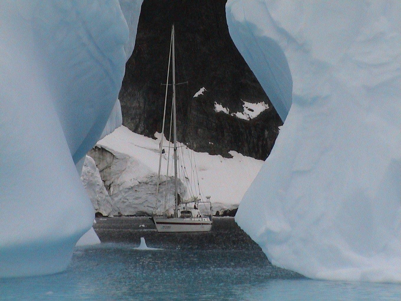 Антарктида_8