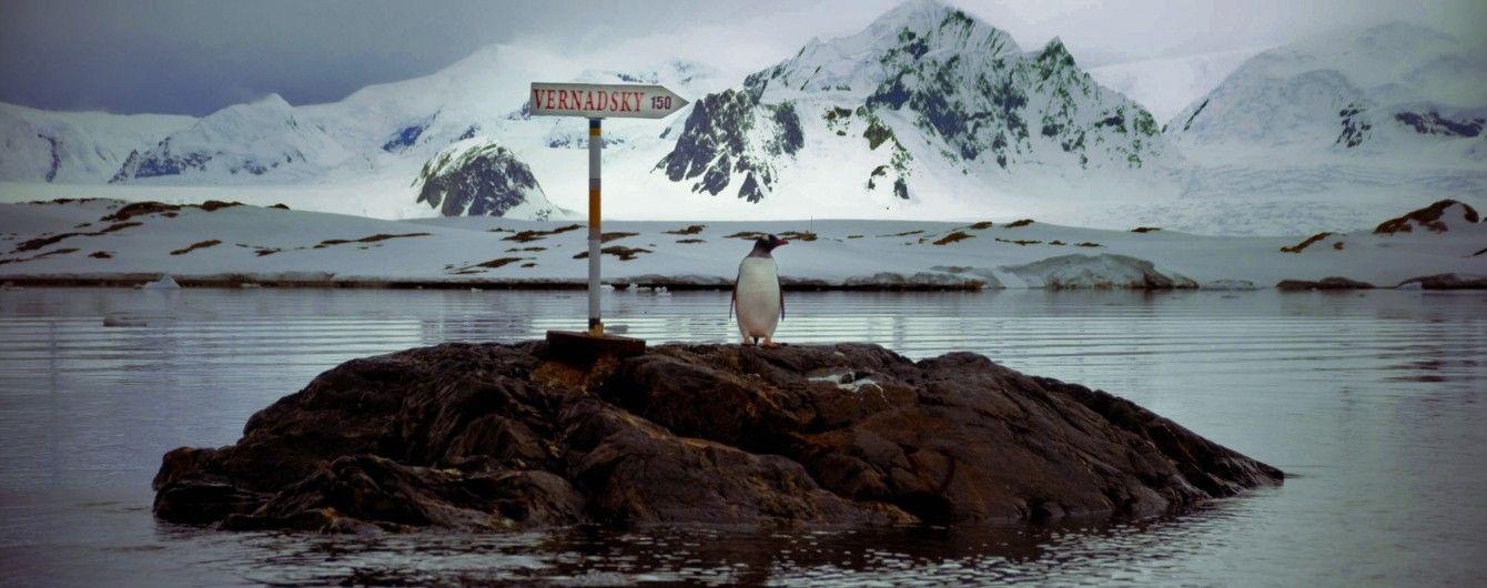 Возле станции Украины в Антарктиде есть месторождения газа и нефти - Литвинов