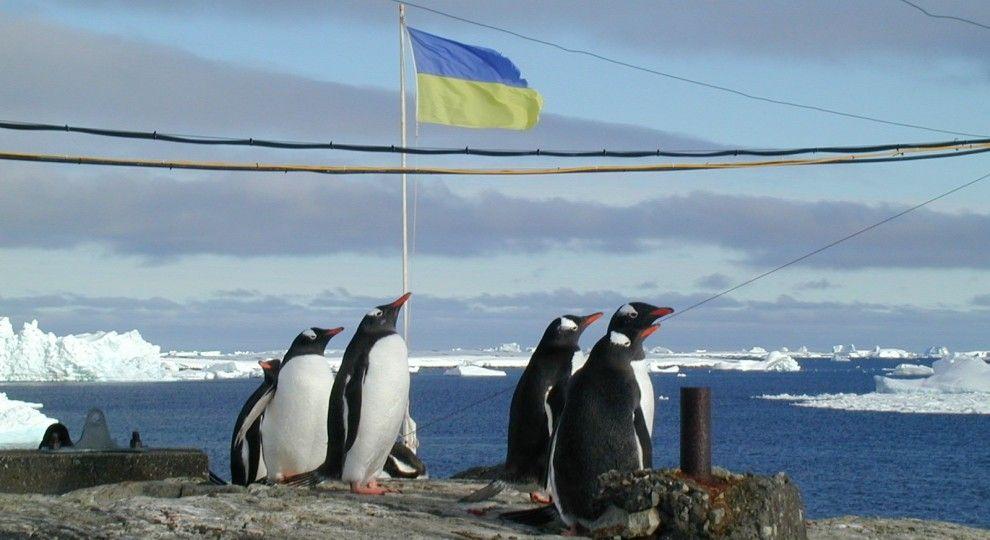 Оскарження тендерів зриває експедицію українських учених до Антарктиди