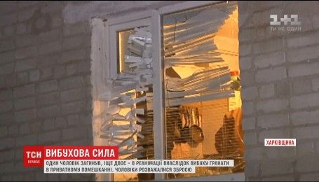 На Харківщині внаслідок вибуху гранати у приватному секторі загинула одна людина