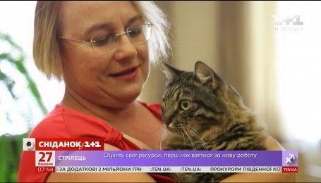 Мой путеводитель. Латвия - коты Рижской Думы