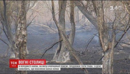 Сухостой на Осокорках загорелся из-за поджога или неосторожного обращения с огнем