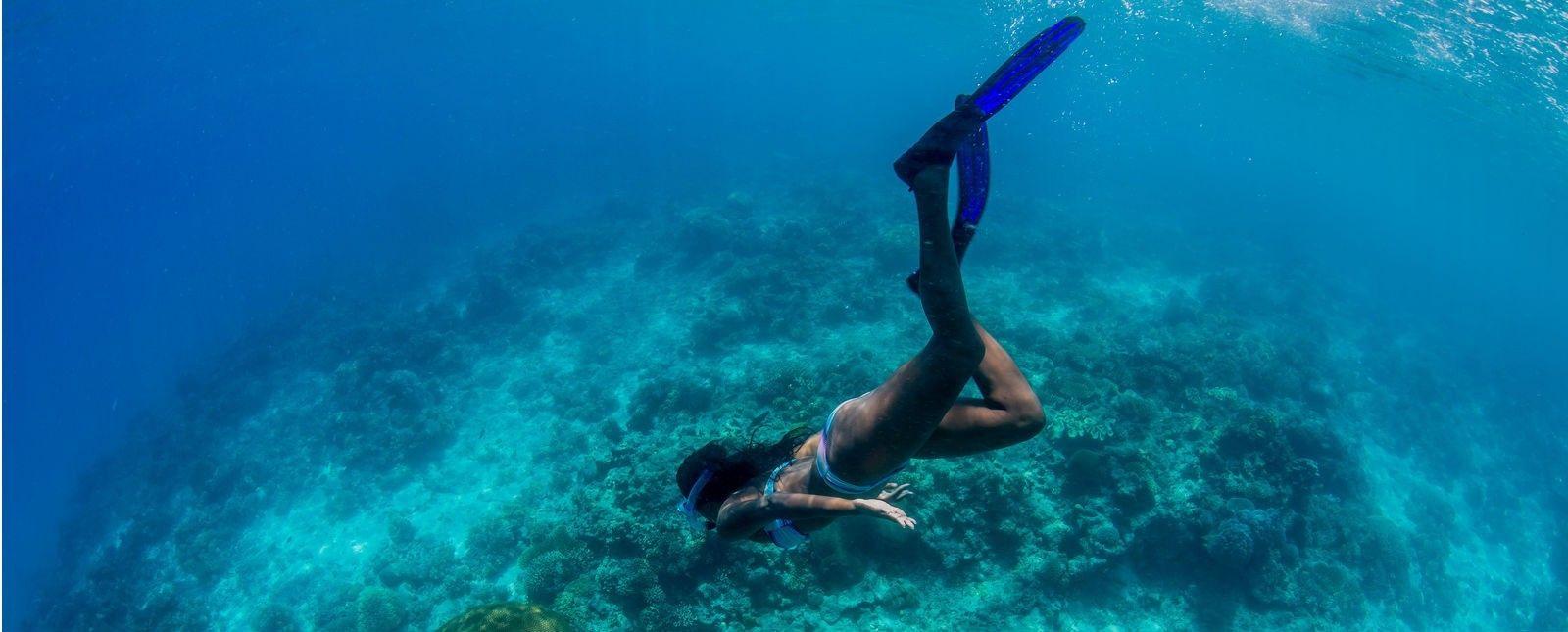 Дайвінг підводний світ вода