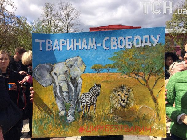В центре Киева более тысячи человек протестовали против использования животных в цирках