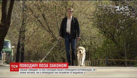 Государству задорого обеспечивать незрячих украинцев собаками-поводырями