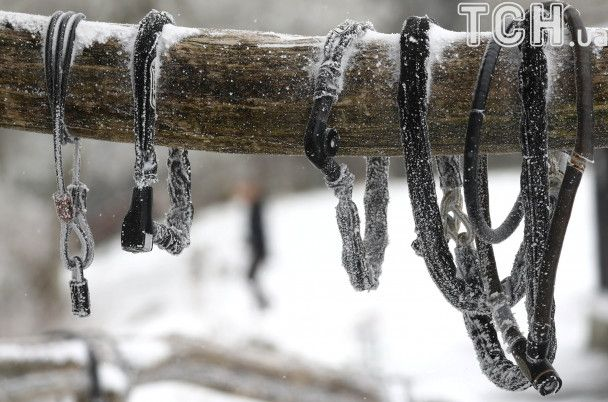 Сніговики у квітні та морозні велопрогулянки. Reuters показало засніжену Німеччину