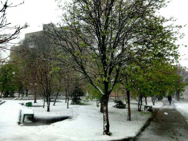 На Харківщині та Дніпропетровщині випав сніг